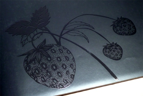 blackbookofcolours_strawberry