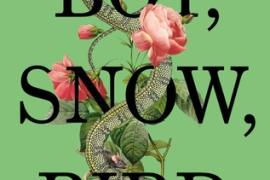 Review: Boy, Snow, Bird by Helen Oyeyemi