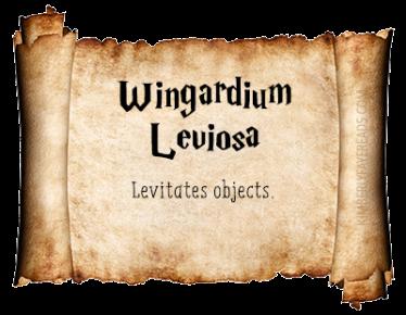 9 - Wingardium Leviosa